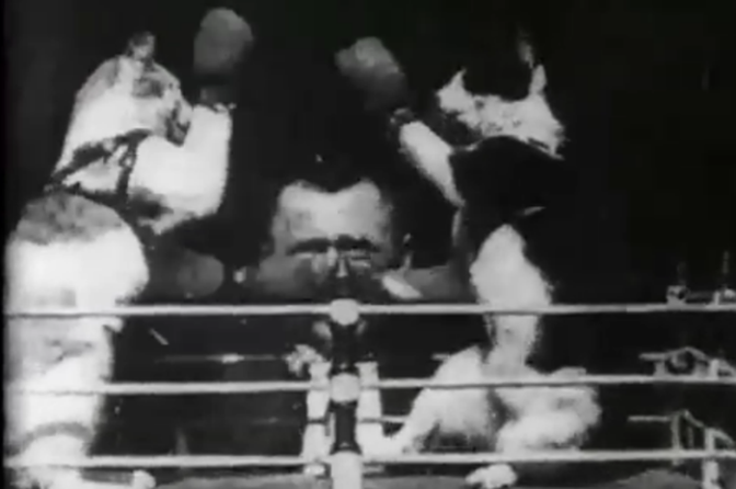 The Boxing Cats (Prof. Welton's) (1894)